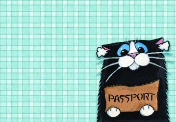 купить Обложка на паспорт Котенок цена, отзывы