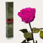 купить Долгосвежая роза Малиновый Родолит в подарочной упаковке (не вянут от 6 месяцев до 5 лет) цена, отзывы