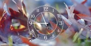 купить Часы на холсте осень пришла 25х50 цена, отзывы