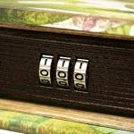 фото 26005  Книги сейф с кодовым замком Natural 26 см цена, отзывы