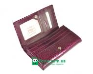 фото 4154  Женский кошелек кожа Изабелла цена, отзывы