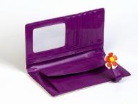 фото 8794  Кошелек Цветик-Семицветик фиолетовый цена, отзывы