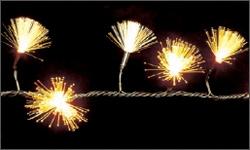 фото 191  Гирлянда светодиодная кисти 100 LED цена, отзывы