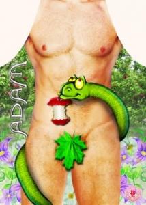 Фартук прикольный мужской Адам
