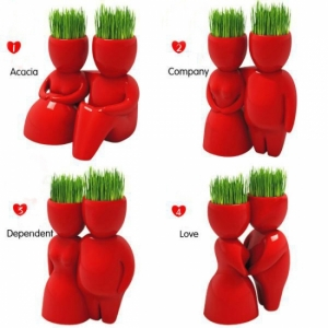 Керамический горшок с семенами красный