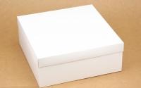 Подарочная коробка 25х25х10 см (Белый)