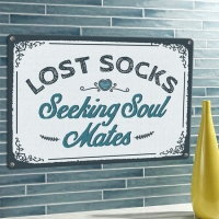 Табличка интерьерная металлическая Lost socks