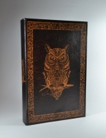 Книга сейф Сова brown 26 см