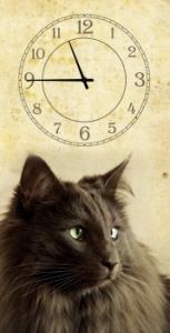 Часы на холсте Кошка 25х50