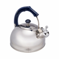 Чайник WELLBERG 2,3 л