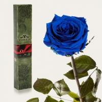Долгосвежая роза Синий Сапфир 7 карат (короткий стебель)