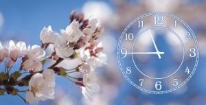 Часы на холсте Нежность 25х50