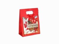 Фото Подарочный пакет Новогодний 16см