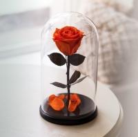 Роза в Колбе Оранжевый Цитрин 7 карат