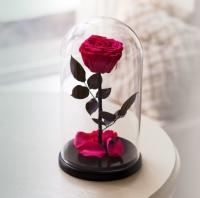 Роза в Колбе Родолит 5 карат