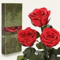 Фото Три долгосвежих розы Алый Рубин 7 карат (короткий стебель)