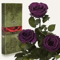 Три долгосвежих розы Фиолетовый Аметист 7 карат (короткий стебель)