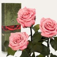 Фото Три долгосвежих розы Розовый Кварц 7 карат (короткий стебель)