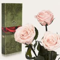 Фото Три долгосвежих розы Розовый Жемчуг 7 карат (короткий стебель)