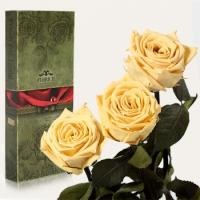 Фото Три долгосвежих розы Желтый Топаз 7 карат (короткий стебель)